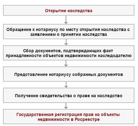 Изображение - Сроки для принятия наследства 6-1